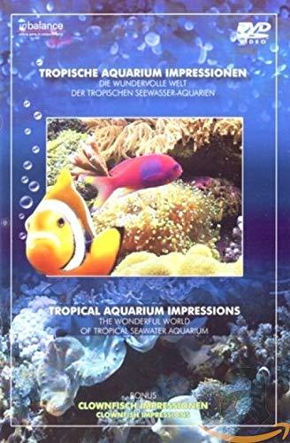 Tropische Aquarium Impressionen