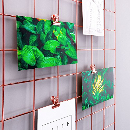 """Simmer Stone Rose Gold Wall Grid Panel for Photo Hanging Display & Wall Decoration Organizer, Multi-functional Wall Storage Display Grid, 5 Clips & 4 Nails Offered, Set of 1, Size 23.6"""" x 23.6"""" Square"""