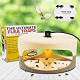 Allinall Flea Trap,Sticky Dome Flea Strap with 2 Glue Discs Odorless Non-Toxic Natural Flea Killer Trap Pad Bed Bug Trap Light Bulb Best Pet Control for Home House Inside,Safe for Childern Pet Dog Cat