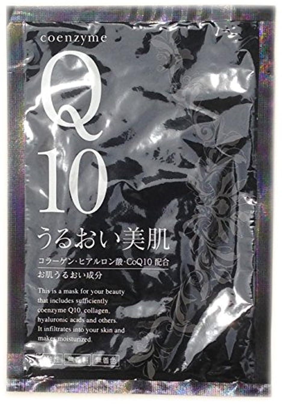 日記ランプエコーフェイシャルマスク CoQ10 うるおい美肌