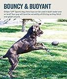 Planet Dog Orbee-Tuff Sport Football Spielzeug für Hunde – Höhe ca. 15,2 cm - 8