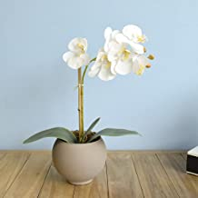 Arranjo de Flor Artificial Orquídea Branca no Vaso de Vidro Fendi Fosco   Linha Permanente Formosinha