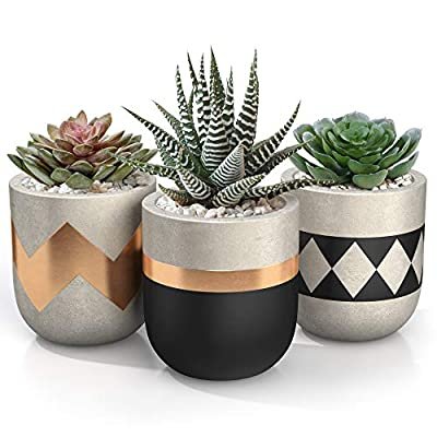 succulent pots, End of 'Related searches' list