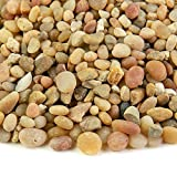 Southwest Boulder & Stone Landscape Rock and Pebble | 20 Pounds | Natural, Decorative Stones and Gravel for Landscaping, Gardening, Potted Plants, and More (Parchment, 3/8 Inch)