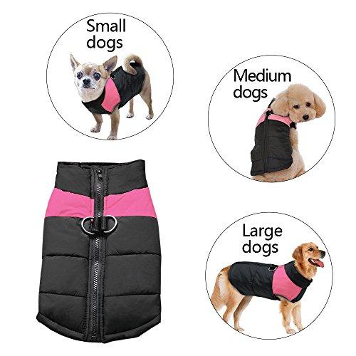 Abrigo Berry para perro de tamaño pequeño, mediano o grande (S-5XL)