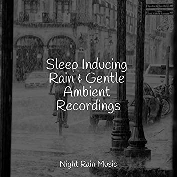Sleep Inducing Rain & Gentle Ambient Recordings