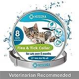 Best Flea Collars For Cats - Cat Collar | Cat Flea Collars | Flea Review