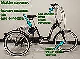 E-Scout Tricycle électrique, Cadre Repliable, Moteur 250w, Assistance par pédale, Cadre en Alliage, Trike électrique (Noir)