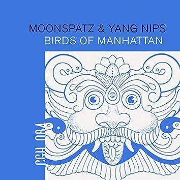 Birds of Manhattan
