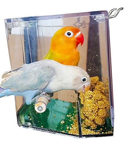 automatic bird seed dispenser - 6
