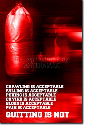 TPCK Boxen/Boxing Motivierungs Foto Poster 08
