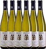 VINELLO 6er Weinpaket Weißwein - Chardonnay & Weißburgunder 2019 - Knipser mit Weinausgießer | trockener Weißwein | deutscher Sommerwein aus der Pfalz | 6 x 0,75 Liter