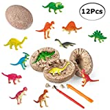 ShellKingdom 3D Dinosaur Fossil Egg Digging Kit, 12 PCS Unique Dino Eggs and Discover 12 Cute Assorted Dinosaur, Novelty Excavation Toy for Party Favor Easter Egg Science Play (Dinosaur)