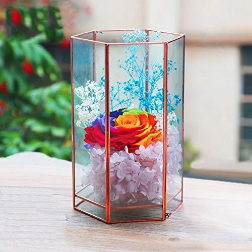 Terrarium Geometrische helder glas bloem vaas voor Succulente luchtplanten bruiloft salontafel