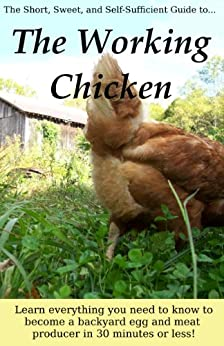 The Working Chicken: Learn everything you need to know to become a backyard egg and meat producer in 30 minutes or less! by [Anna Hess]