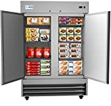 KoolMore - RIF-2D--SS 54' 2 Door Stainless Steel Upright Commercial Reach-in Freezer - 47 cu. ft (RIF-2D-SS)
