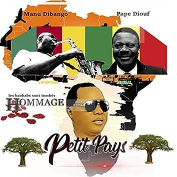 Les baobabs sont tombés (feat. Manu Dibango, Pape Diouf) [Hommage]