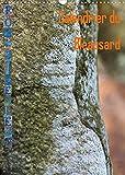 Calendrier du Bleausard (Calendrier mural 2022 DIN A3 vertical): Le calendrier de tous les grimpeurs fans d'escalade à Fontainebleau (Calendrier mensuel, 14 Pages )