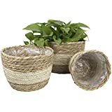 Seagrass Planter Basket Indoor Outdoor, Flower Pots Cover, Plant Containers, Beige, 10 inch(3-Pack)