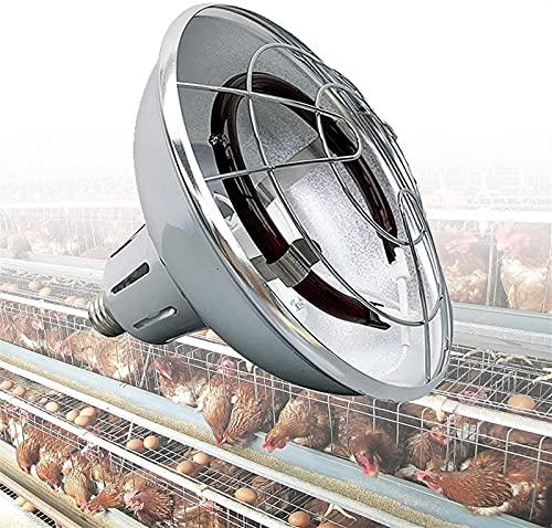 MARHD Lámpara de Calor infrarroja para Aves de Corral, lámpara de Calor para Cachorros, Polluelos, Conejos, Temperatura Ajustable 200 W-400 W, lámpara de calefacción halógena con termostato y Cable