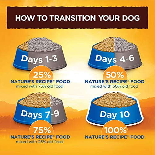 Nature's Recipe Lamb Meal & Rice Recipe Dry Dog Food for Adult Dogs, 30 Pounds