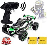 Blexy RC Racing Cars 2.4Ghz High Speed Rock Off-Road Vehicle 1:20 2WD Radio Remote Control Racing Toy Cars Electric Fast...