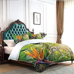 Four-piece bedding Silk Sheets Printed Quilt Duvet Cover Close-up Image of Strelitzia Reginae Bird of Paradise Flower Madeira Island Portugal no irritation to the skin Multicolor W85″xL85″