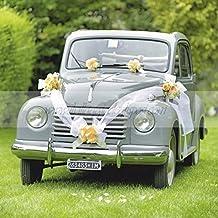 Brizzolari Kit decoración de Coche Novios, con Lazos Tiffany y Cinta Blanca, Color, 004938_ 29