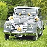 Brizzolari- Kit per Auto con coccarde Nastro Bianco, Colore, 004938_01...
