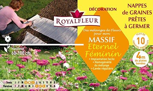 Royalfleur PFS308682 - Sembrar mezclando mi Flores Femeninas masivas Mesa Eterno