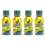 Zorritone Syrup 4.0 OZ (4 Pack)