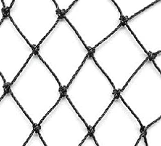 Excursions Aviary Netting Heavy Knotted 2 inch Poultry Net (25 ft x 100 ft)