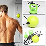 Msleep Boxing Quick Puncher Reflex Ball Boxing Speed Ball Fitness Training for Sports Professional Fitness Equipment