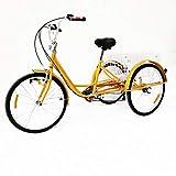 RANZIX Tricycle pour Adulte 24 Pouces 6 Gangs 3 Roues Vélos Senior Bicycle Tricycle Adulte avec Basket (Jaune avec Lampe)