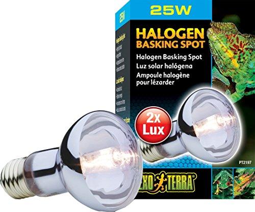 EXO TERRA Exoterra Éclairage pour Reptiles Lampe Halogène Baskingspot 25 W