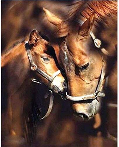 Kit de pintura de diamante 5D por números para adultos,kit de bordado de diamantes, taladro redondo completo, decoración de la pared del hogar, caballo guapo, 11,8 x 15,7 pulgadasadas,