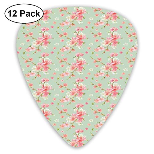 Guitar Picks12pcs Plectrum (0.46mm-0.96mm), Retro Spring Blossom Flowers In French Garden With Florets Garland Artisan Theme Image,For Your Guitar or Ukulele