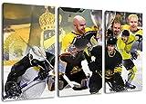 Krefeld Eishockey, Fan Artikel Leinwandbild 3Teiler
