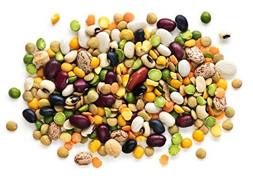 Bunte Bohnen 20 Samen - Lange, schwarze, rote, kurze, mini