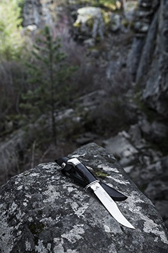 Buck Knives 119 Special Fixed Blade Knife