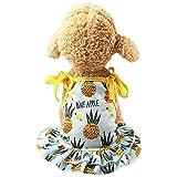 Womdee Ropa para Mascotas para Mujer, Linda impresión de Frutas, Ropa para Perro | Cachorro Lindo Vestido para Parejas para Mascotas pequeñas Gatos Perros, tamaños