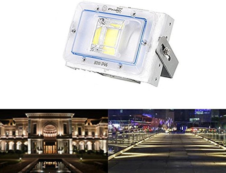 Wuchance 30W LED Flutlicht im Freien wasserdichte IP65 Anschlagtafel-Straen-Scheinwerfer AC220V (Farbe   Watt 30W)