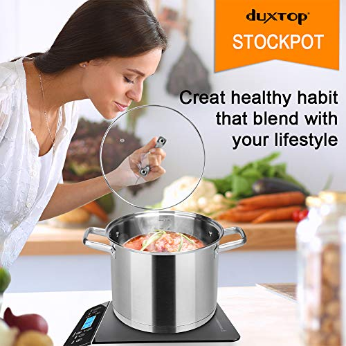 Duxtop Professional Stainless Steel Stock Pot with Glass Lid, Induction Cooking Pot, Impact-bonded Base Technology, 8.6 Quarts
