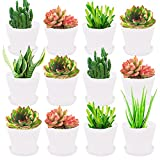 12 Pack 4 Inch White Plastic Planters Pots,Plant Flower Seedlings Nursery Pot with Pallet,Indoor Flower Plant Container for All House Plants,Succulents,Flowers and Cactus