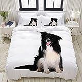 FOURFOOL Bettwäsche-Set,Hundeporträt von reinrassigem Border Collie White Animal Black Canine Schnitt Tier heraus,Dekoratives 3-teiliges Bettwäscheset mit 2 Kissenbezügen,doppelte Größe(160 x 220cm)
