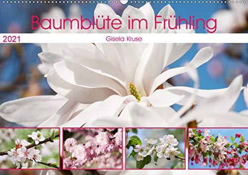 Baumblüte im Frühling (Wandkalender...