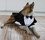 Evursua Large Dog Tuxedo Wedding Party Suit,Dog Costumes for Large Dogs Golden Retriever Samo Bulldogs,Gentleman Dog Attire with Bowite (Black, XL)