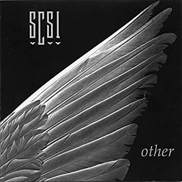 SCSI Other