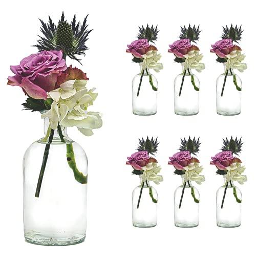 Casavetro - Juego de 6 jarrones pequeños, diseño de Flores, para decoración de Mesa, Boda, Fiesta, Botella, Cristal, Transparente (6 Unidades)