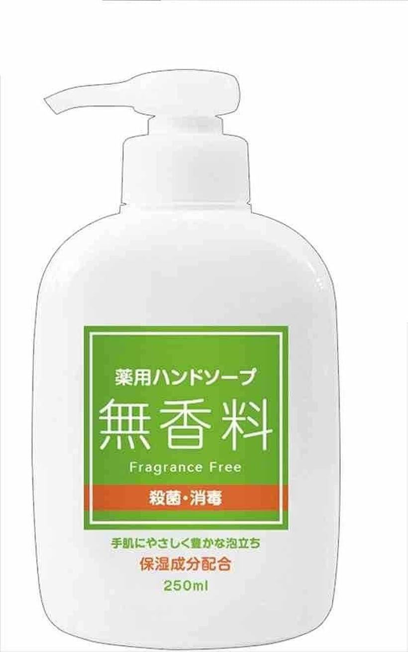 によって開梱ポーチ第一薬用ハンドソープ無香料本体250ml 46-248 【まとめ買い240個セット】